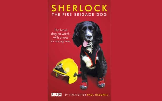 Sherlock, o cão investigador de incêndios em Londres